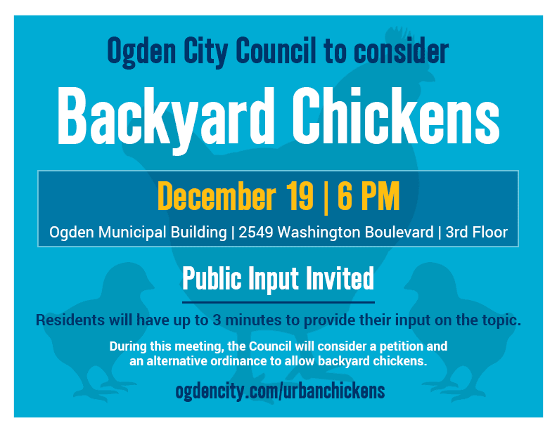 Backyard Chickens to be considered on December 19